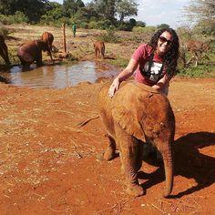 jotto-elefante-bebe