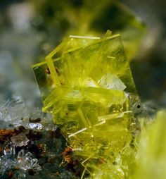 Autunite. Rocche Grana quarry, Bagnolo Piemonte, Cuneo Province, Piedmont, Italy FOV=2.2 mm. Collection et photo Giuseppe Finello