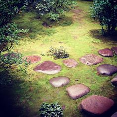 No.131 at Kobaiin, Daitokuji, Kyoto, Japan This is a path leading to a tea house. The combination of softness of mosses and stepping stones makes us feel mild and relaxed in order to fully appreciate tea ceremony.