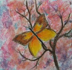 butterfly pastel done by 4th grader