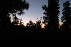 table mountain campground, angeles state forest, wrightwood, california.