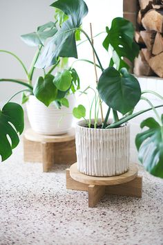 DIY Modern Wood Plant Stand. This looks super easy and will keep the plant off the ground. #diy #diyplantstand #plantstand