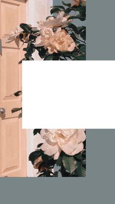 Creative Instagram Photo Ideas, Instagram Photo Editing, Story Instagram, Iphone Wallpaper Tumblr Aesthetic, Aesthetic Pastel Wallpaper, Aesthetic Wallpapers, Flower Background Wallpaper, Flower Backgrounds, Wallpaper Backgrounds