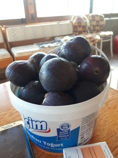 Yogurt, Plum, Fruit, Food, Meal, The Fruit, Essen, Hoods, Meals