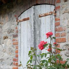 Old doors & roses