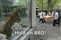 Hold on bro!