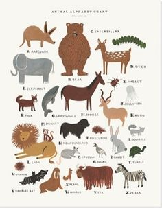 Rifle Paper Co.'s alphabet chart, which features Africa's kudu, zebra and lion