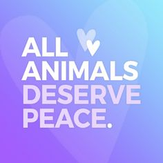 Teaching kids to have compassion and empathy for their furry, feathered, & finned friends is vital for preventing cruelty to animals as well as in raising them to respect and treat those who are different from them with kindness. Get started today! #HumaneEducation #Kindness #CompassionForAll #LessonPlans #k12