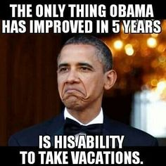 Go ahead....try to disprove it. Fair warning though: Obama butt dwellers are running out of excuses so chances are, we've already heard yours, too.