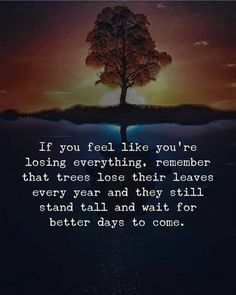 Quotes Thoughts, Positive Quotes For Life, Meaningful Quotes, Sad Quotes, Wisdom Quotes, Great Quotes, Positive Vibes, Quotes To Live By, Positive Feelings