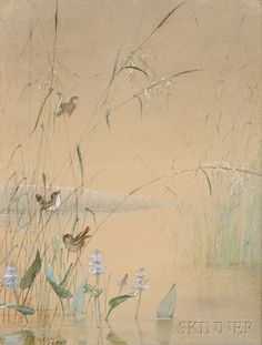 Fidelia Bridges (American, 1834-1924)      Songbirds in Reeds at the Pond's Edge