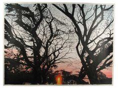 Tree, 2010 jessica dessner