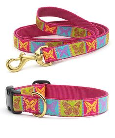Look what I found on #zulily! Butterfly Dog Collar & Leash Set by Up Country #zulilyfinds