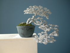Are you interested in getting an indoor bonsai tree? If you are, then you definitely need to learn about how you can take good care of your tree. Bonsai Tree Care, Indoor Bonsai Tree, Wire Tree Sculpture, Wire Sculptures, Bonsai Wire, Bonsai Styles, Wire Trees, Miniature Trees, Metal Tree