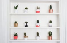 DIY Painted Cacti Pots. - ghostparties