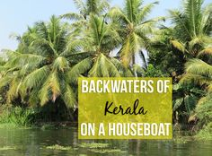 Experiencing Kerala on a houseboat adds to an incredible peacefulness and you gain a real insight into the lives of people living in the backwaters area.