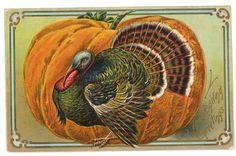 vintage Thanksgiving Victorian postcard greeting pumpkin turkey