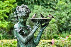Birds bathing in the basin of a sculpture in the Secret Garden. Dream Garden, Garden Art, Garden Design, Garden Statues, Garden Sculpture, Ideas Para Decorar Jardines, Sounds Of Birds, Gothic Garden, Garden Stand