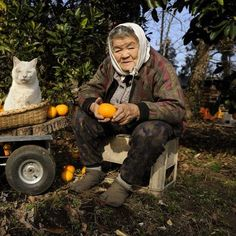 Miyoko Ihara has been taking photographs of her grandmother, Misao and her beloved cat Fukumaru since their relationship began in 2003. Their closeness has been captured through a series of lovely photographs. 12-19-12 / Miyoko Ihara