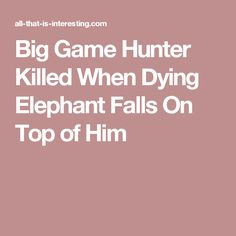 Big Game Hunter Killed When Dying Elephant Falls On Top of Him
