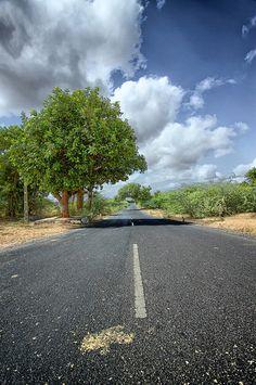 Somewhere on Bhuj-Mundra road, Kutch, Gujarat Country Roads, India, Photography, Goa India, Photograph, Fotografie, Photoshoot, Indie, Fotografia