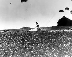 Paratrooper of US 101st Airborne Division tumbling after his landing, the Netherlands, 25 Sep 1944