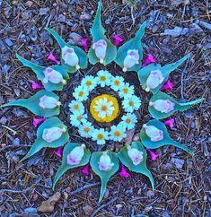 Spring is in the air ❀ Flower Power Mandala Art Mandala Art, Mandala Nature, Mandalas Drawing, Flower Circle, Flower Art, Circle Art, Art Et Nature, Free People Blog, Circular Pattern