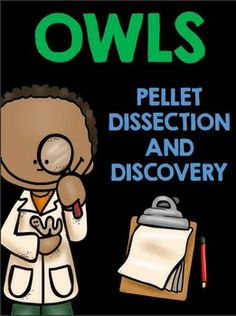 Owl Pellet Dissection and Discovery Mini Book!