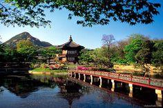 Là một đất nước hiện đại nhưng đậm nét truyền thống lâu đời, Hàn Quốc không chỉ là điểm đến thu hút khách du lịch mà còn thu hút người lao động xuất khẩu và học sinh du học Hàn Quốc từ khắp nơi trên thế giới. Có thể bạn quan