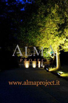 ALMA PROJECT @ Il Borro - Amphiteatre  - trees - uplights (2)