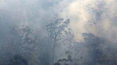 Spring 2013 #NSW #Australia bush fires