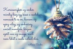 Christmas And New Year, Winter Christmas, Christmas Time, Christmas Ornaments, Holidays And Events, Happy Holidays, Love Me Quotes, Book Of Life, Amazing Grace