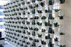 Vertical Garden by Joost Bakker for Schiavello | Vertical Green - More on the RSD Blog www.rsdesigns.com.au/blog/