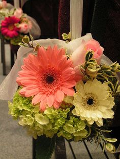 gerber daisy pew decoration wedding | gerber daisy pomander created with large and miniature gerber daisies ...