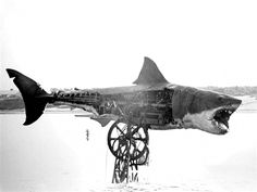 """Jaws"" Steven Spielberg's unreliable mechanical shark, nicknamed Bruce after the filmmaker's lawyer."