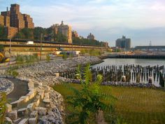 Brooklyn Bridge Park | Credit: Murrye Bernard