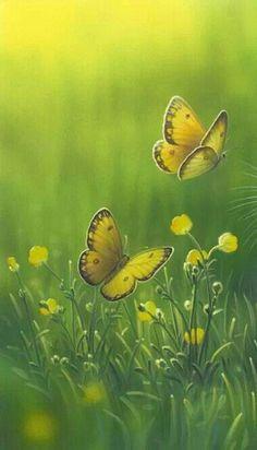 """""""Si hay mariposas amarillas, hay magia."""" G. García Márquez."""