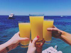 #rotto #christmas #christmasbreak #daiquiri #mango #mangodaiquiri #happy #rottnestisland #fromwhereyoudratherbe #thisisthelife #suntanning #australia #xmas #thisiswa #thomsonbay #cocktails #drinks #blueskies #bluewater #boatlife #boating #boatingwa #boatingwa #perfect #perth #perthisok #perthwa #perthlife #lovemyrotto @allanah88 by becca020 http://ift.tt/1L5GqLp