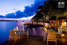 Conrad Maldives Rangali Island - Vilu-Restaurant http://www.doortomaldives.com/resorts/view/18