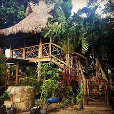 Tiki get-away. Not only is it Tiki, it's also an adult sized tree house!! How cool is that?!
