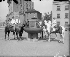 Horse Watering Trough, 1920