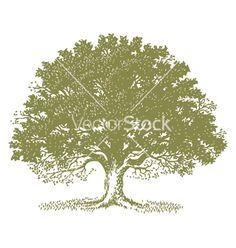 Tree vector 38179 - by nezabarom on VectorStock®
