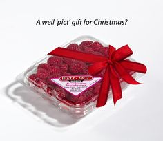 There's nothing like the gift of fresh Well Pict berries year-round! Healthy Treats, Strawberry, Christmas Gifts, Wellness, Invitations, Holidays, Fresh, Crafts, Color