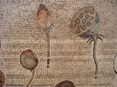 Pompeii Nile mosaic, plant detail by helenmilesmosaics