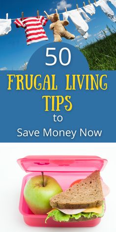 First Home Buyer, Money Now, Backyard Farming, Wild Edibles, Get Out Of Debt, Frugal Living Tips, Fermented Foods, Money Saving Tips, Homesteading