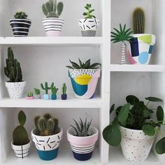 Planters and mini plants from www.thiswaytothec… plant pot cacti succulents clay plants pilea - All About Mini Plants, Potted Plants, Indoor Plants, Cacti And Succulents, Planting Succulents, Planting Flowers, Painted Plant Pots, Painted Flower Pots, House Plants Decor