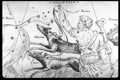 File:Canes Venatici.gif