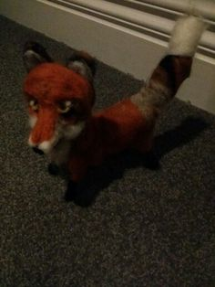 A little fox with a big personality