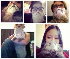 Catbeards :)