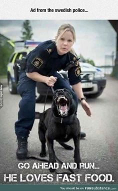 Funny pictures about Swedish Police Doesn't Mess Around. Oh, and cool pics about Swedish Police Doesn't Mess Around. Also, Swedish Police Doesn't Mess Around photos. Funny Animal Memes, Cute Funny Animals, Funny Dogs, Funny Memes, Hilarious, Videos Funny, It's Funny, Cops Humor, Police Humor